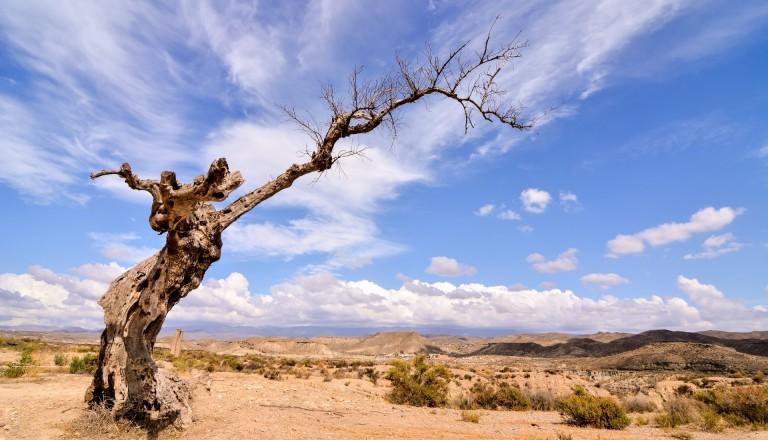 Tabernas Spanien Wüste