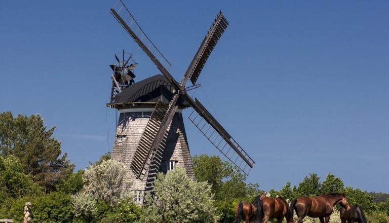 Die holländische Windmühle in Benz auf Usedom.