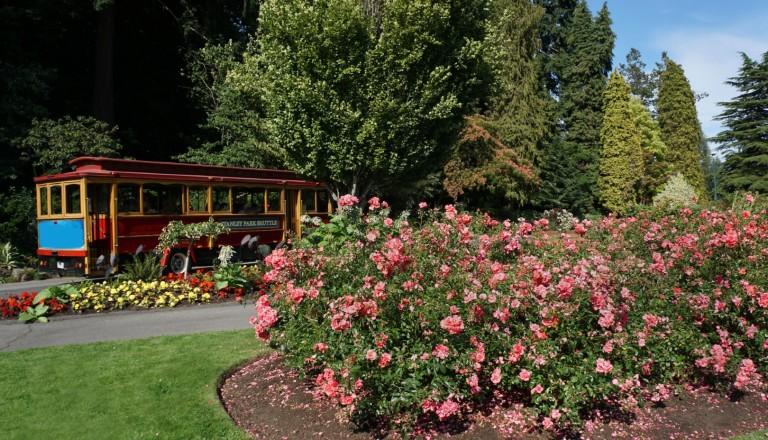 Der Stanley Park Vancouver