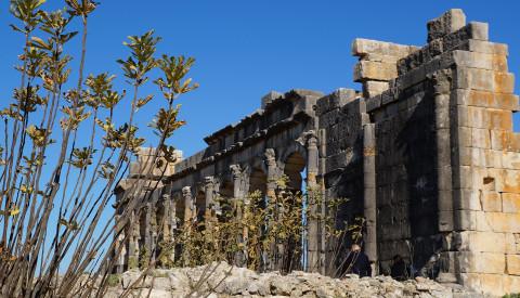 Die antiken Ruinen von Volubilis