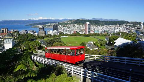The contemplative capital Wellington