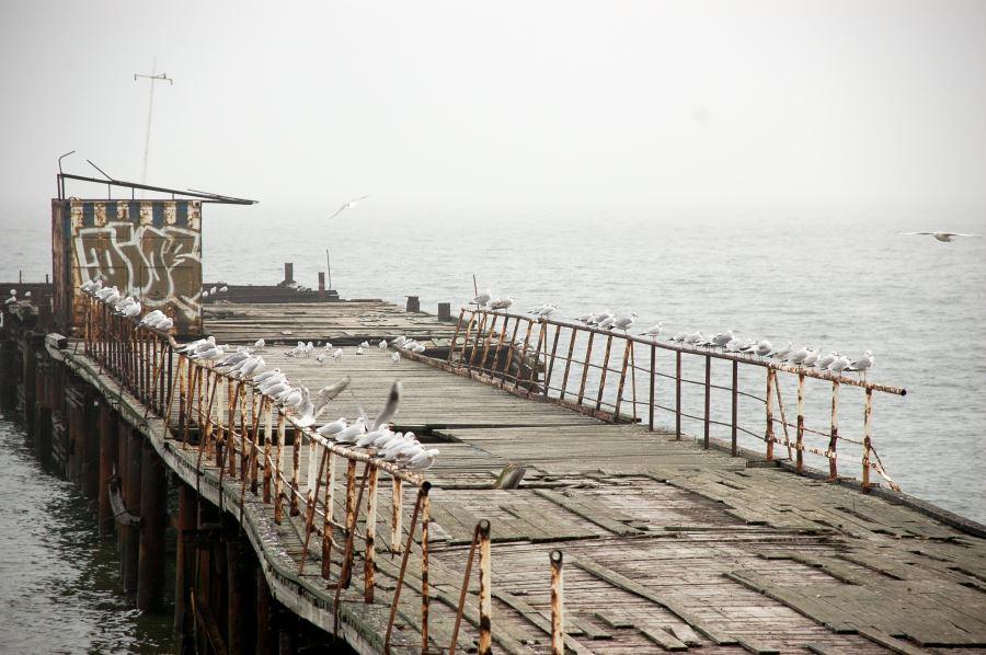 Pier mit Möwen in Odessa