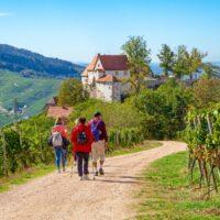Schloss Staufenberg bei Durbach