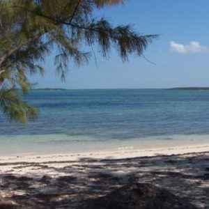 Bahamas, Ostküste von Androz