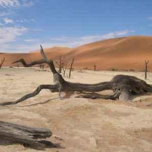 Death Valley, Sossusvlei, Namibia