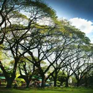 Diliman Sunken Garden, University of the Philippines, Philippinen