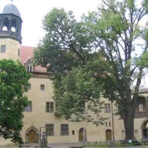 Lutherhaus, Wittenberg, Sachsen-Anhalt, Deutschland