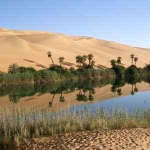 Oase, Libyen