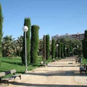 Park, Alicante, Valencia
