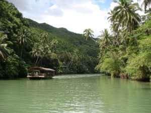 Regenwaldtour auf den Philippinen