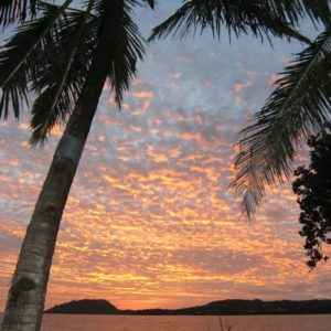 Sonnenuntergang Palmen, Madagaskar
