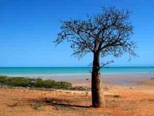 Strand, Broome, Western Australia