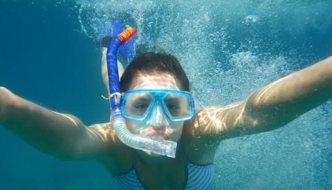 Gümbet - Snorkeling