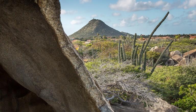 Aruba-Hooiberg