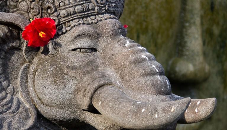 Bali-Elephant-Safari-Park