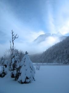 Schneelandschaft in Bayern