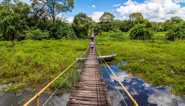 Brasilien-Pantanal.