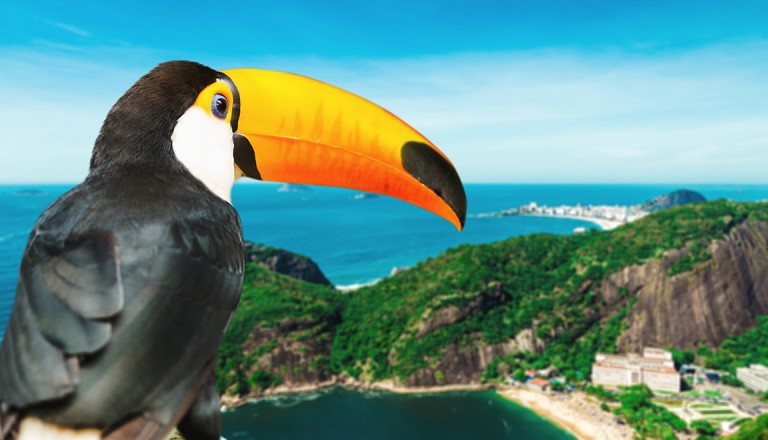 Brasilien-Zoologischer-Garten-Rio-de-Janeiro