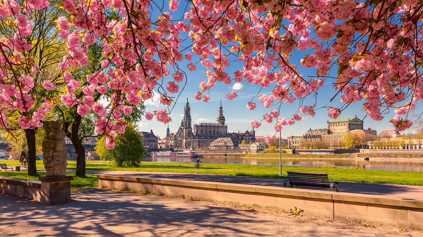 Dresden-Fruehling