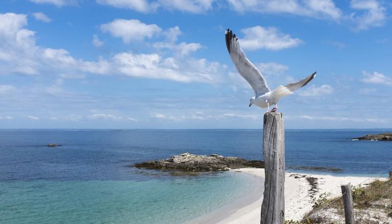 Frankreich - Glenan Islands