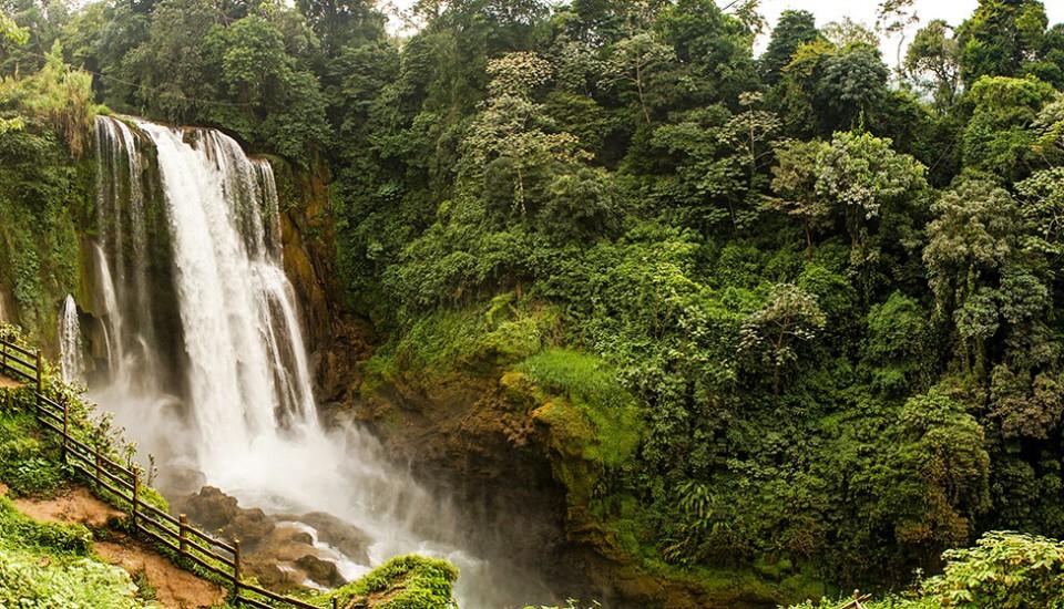 Honduras - Pauschalreise