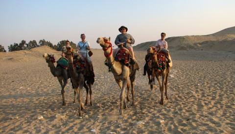 Hurghada - Kamel-Safari