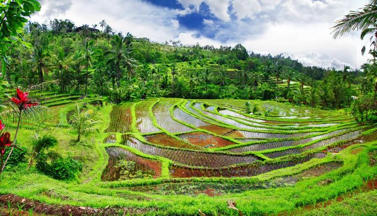 Indonesien - Pauschalreisen
