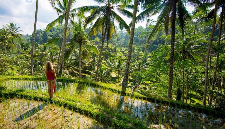 Indonesien - Reisezeit