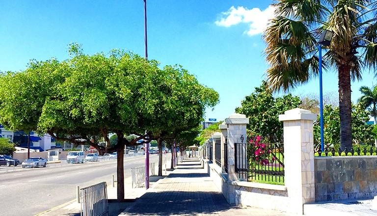 Jamaika-Emancipation-Park-in-Kingston.