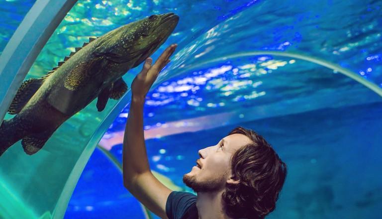 Kapstadt-The-Two-Oceans-Aquarium