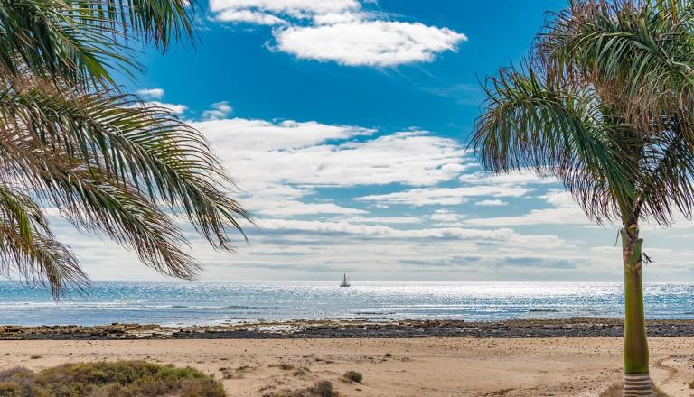 Lanzarote - Playa de los Pocillos