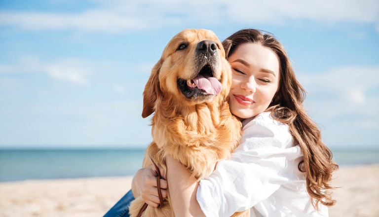 Luxusurlaub - Hund