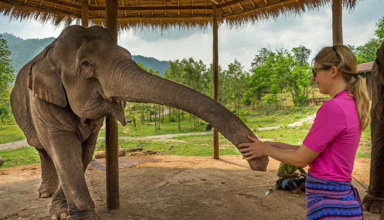 Myanmar - Green Hill Valley Elephant Camp