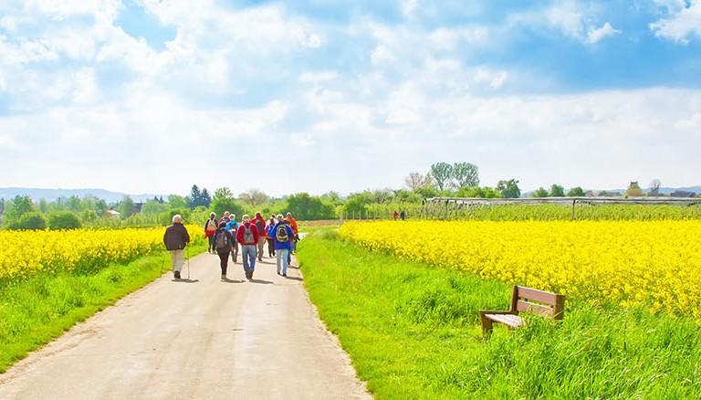 Niederrhein-Wanderer-