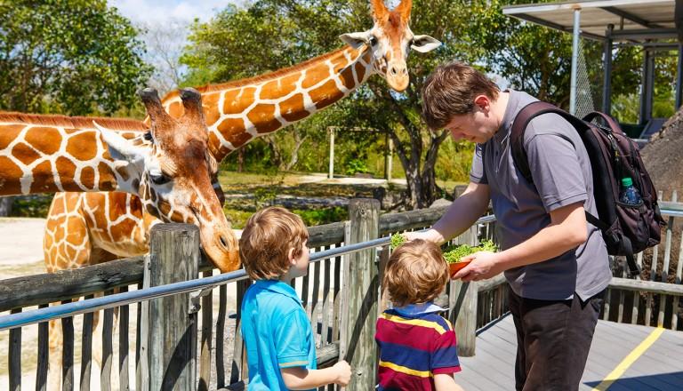Orlando-Central-Florida-Zoo-und-Botanical-Gardens.