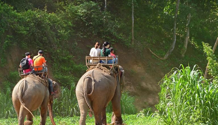 Phuket - Elefanten Trekking