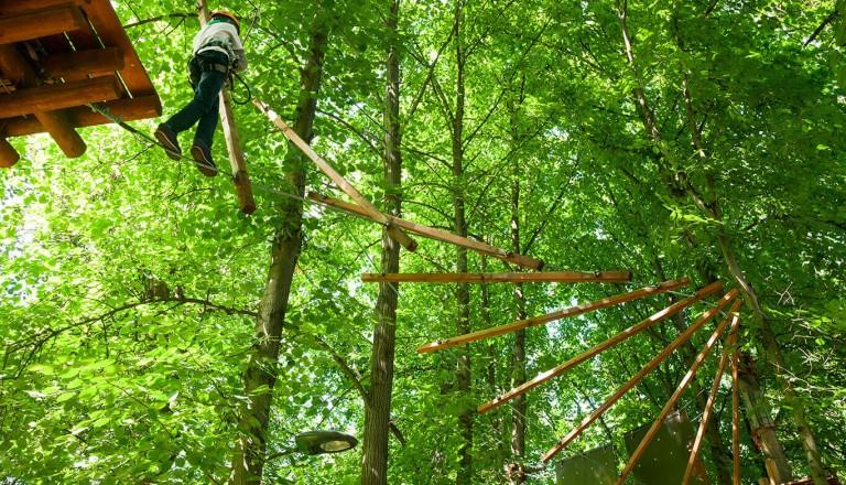 St-Lucia - Treetop Adventure Park