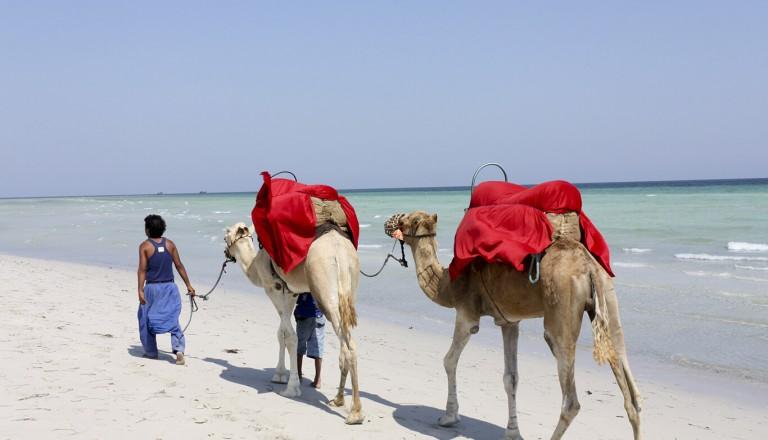 Tunesien - Sidi Mahrez