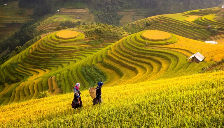 Vietnam - Pauschalreise