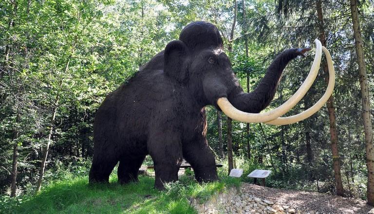 Altmühltal Dinopark Mammut