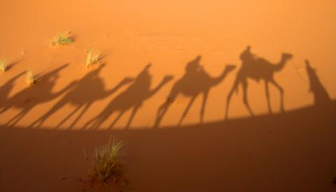 Pauschalreisen Marsa Alam