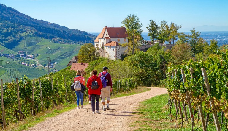 Wellnesshotel - Schwarzwald
