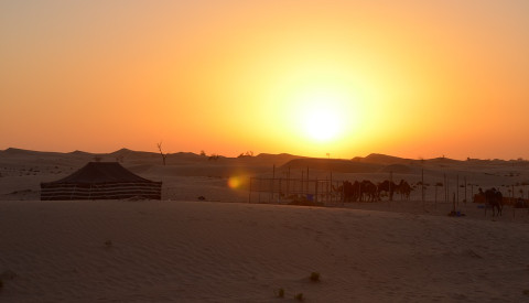 Städtereise Abu Dhabi