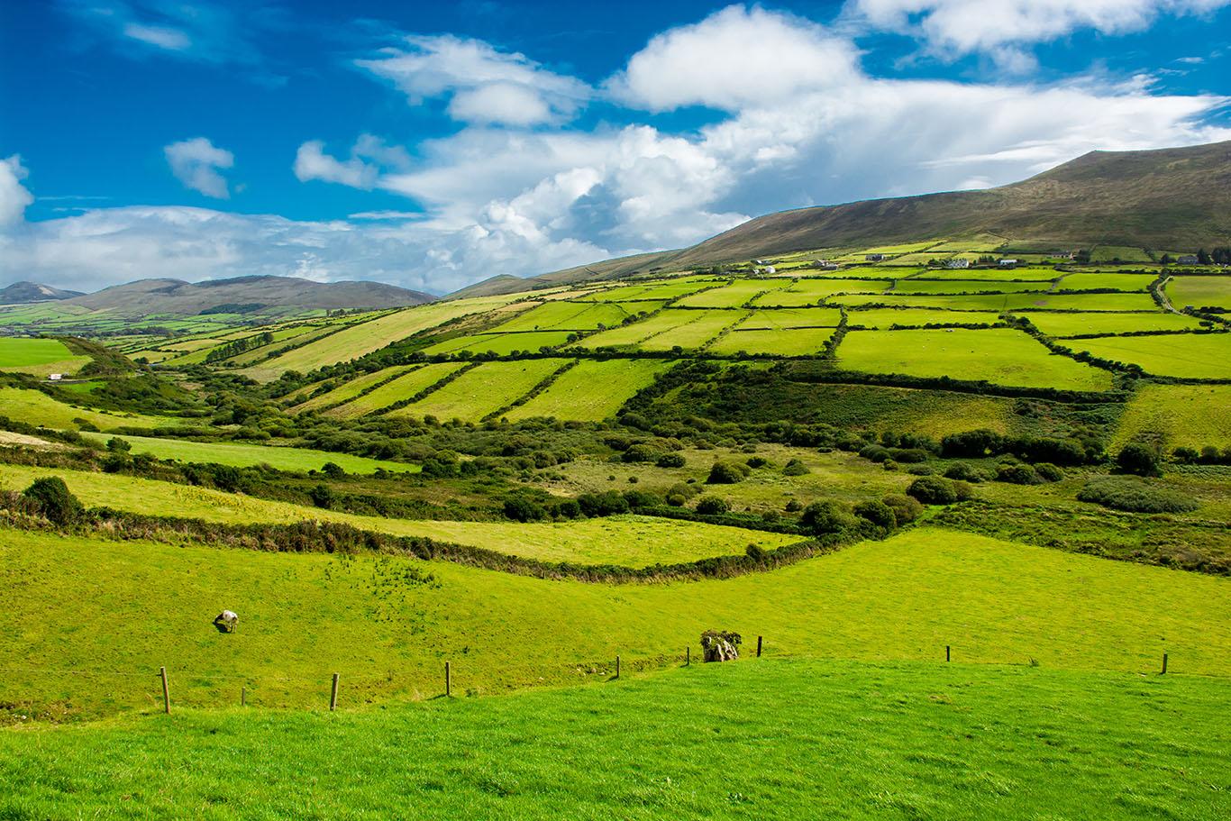 Billigfluege-Irland