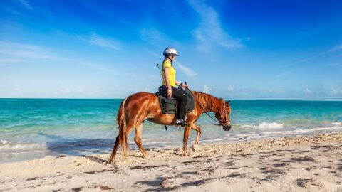 Flüge auf die Turks- und Caicosinseln