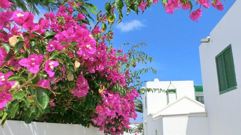 Spanien, Lanzarote