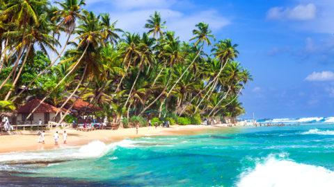 Flüge nach Sri Lanka