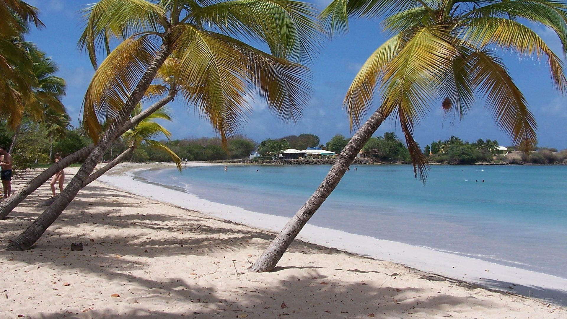 Flüge nach Martinique
