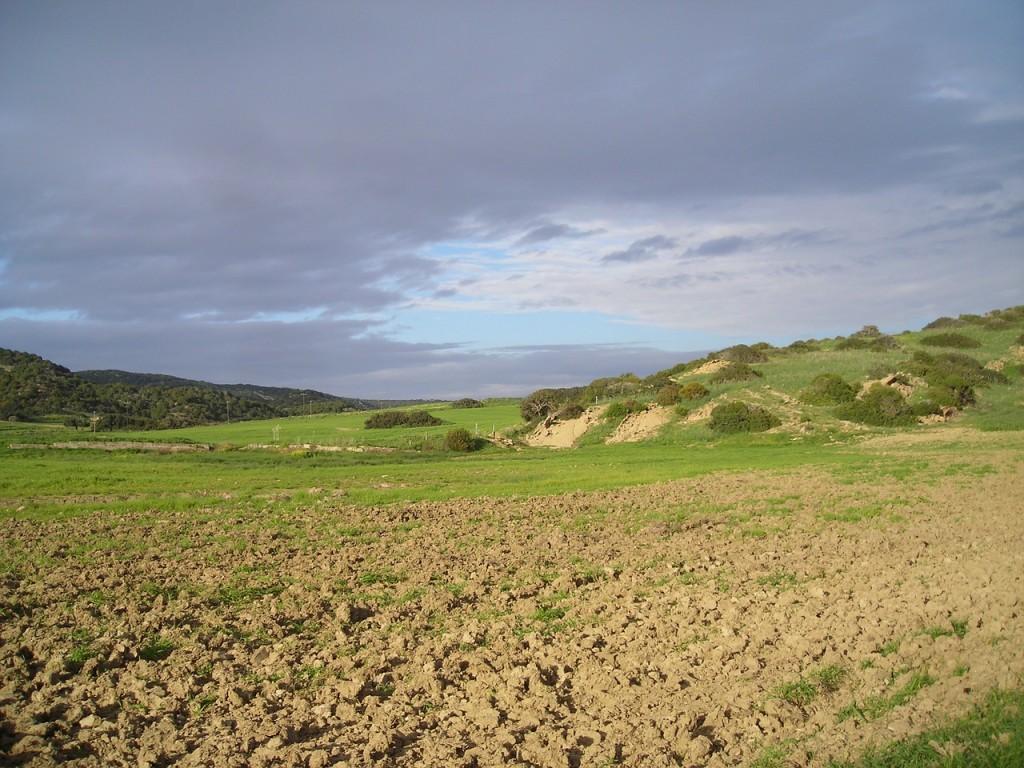 Landschaft Zypern